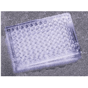 BD Falcon 96-Well Cell Culture Plates, BD Biosciences 351177 Plates With Untreated Surface, Sterile