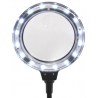 Carson MagniFlexPro 2x LED Lighted Magnifier